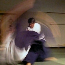 Aikido_throw